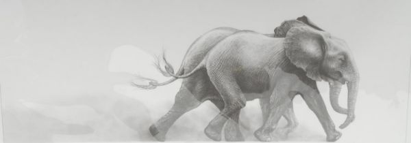 Gary Hodges Wildlife Artist (1954- ), by and after, Joy, monochrome print, signed in pencil, 33cm