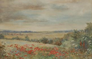 Olive Greenhill (mid 20th century) Poppy Fields signed, watercolour, dated 1864, 22.5cm x 34cm