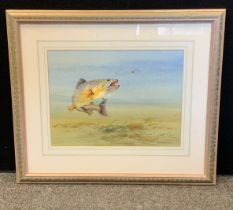 David Charlesworth, Fish Watercolour, Signed and Dated (19)91. 53cm x 63cm