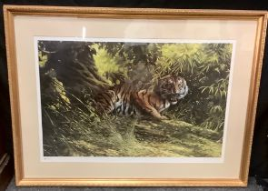 Spencer Hodges by and after, Ltd edition Eye of The Tiger, signed, 167/850, 58cm x 90cm