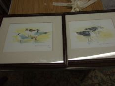 """Jacqueline O""""Malley 2 watercolours of Gulls both 17 x 24 cm"""