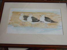"Jacqueline O""Malley watercolour 3 gulls 32 x 18 cm"
