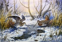 """Carl Donner (b.1957), """"Snipe in a snowy woodland"""", watercolour, signed lower right, 35 x 53 cm"""