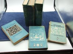 pelican Books Common Wild Flowers , Uncommon Wild Flowers , Grasses , Flora of the British Isles