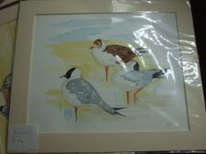 """Jacqueline O""""Malley watercolour of Gulls approx 10 x 8 inches"""