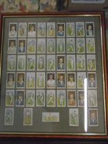 Framed cigarette cards cricketers