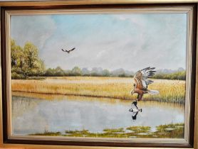 P. Welch (C 20th East Anglian Wildlife Artist) framed oil on board depicting Marsh Harriers over the