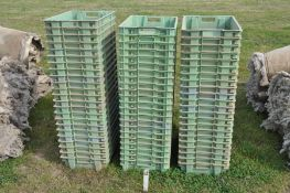 Quantity of plastic stacking shallow crates