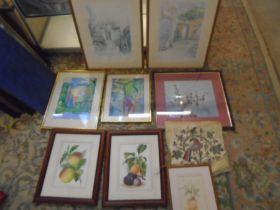 framed pictures bundle