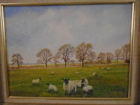 J Sheward oil on board local artist, of sheep on cock drove Downham mkt, plus SHC watercolours