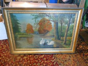Oil on canvas depicting swans on a river 80cm x 54cm
