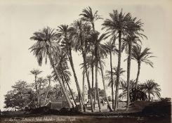 Egypt: Egyptian types, landscapes, street life, monuments etc.