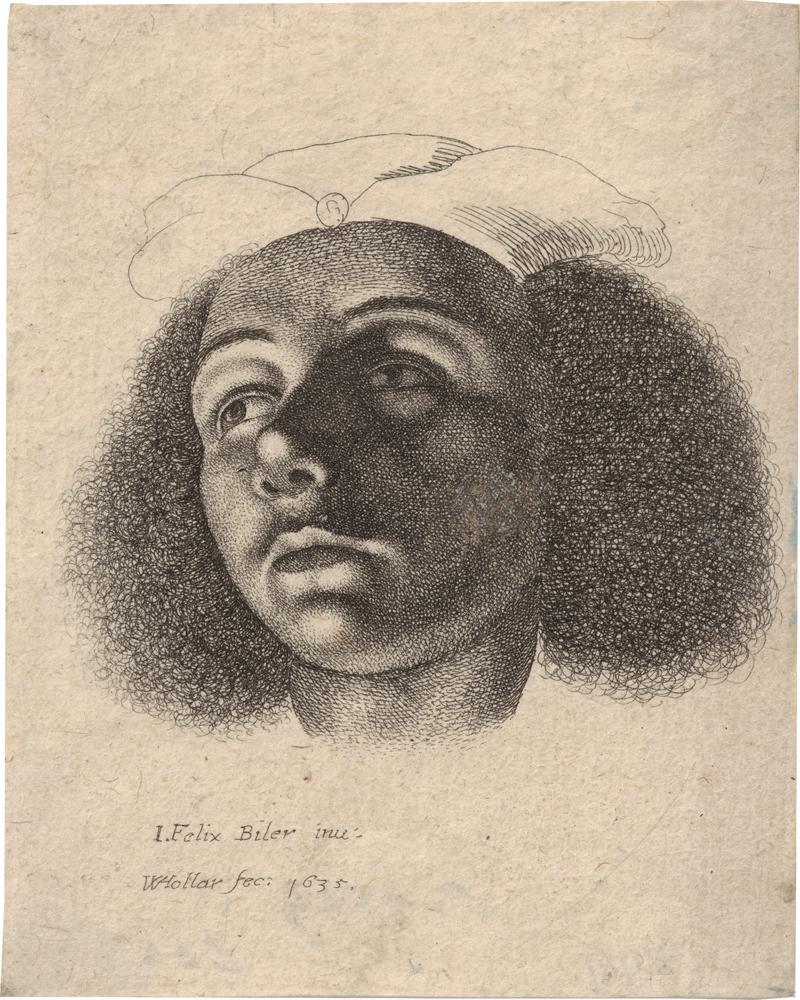 Hollar, Wenzel: Kopf eines jungen Mannes