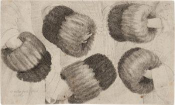 Hollar, Wenzel: Ein Muff, aus fünf verschiedenen Perspektiven gesehen