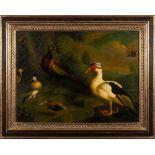 Style of Melchior de Hondecoeter [20th Century] - Water fowl, ducks,