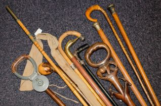 A group of various walking sticks and canes,: including two silver mounted examples etc.