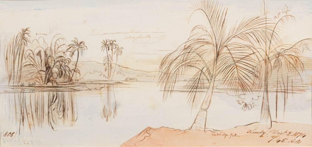 Edward Lear [1812-1888]- Kandy; Dec 2. 1894, 7.