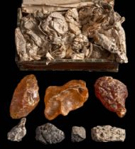 (Agathis australis), Kauri Gum, a group of three specimens of various sizes:,