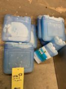 Lot de 9 ICE PACKS