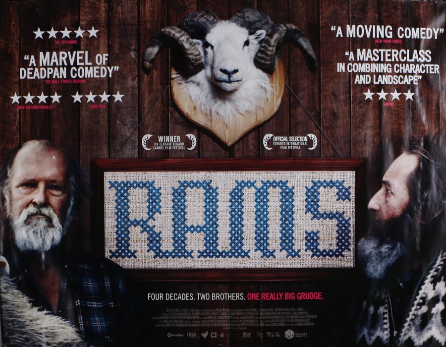 """Rams (2015) - British Quad film poster, directed by directed by Grímur Hákonarson, rolled, 30"""" x 40"""""""
