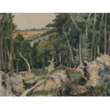 Frank Runacres (1904-1974) Tree's and Fields, signed watercolour, 38.5cm x 29cm