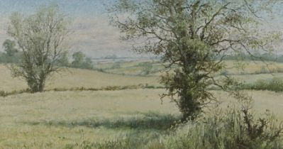 Mervyn Goode (b.1948) Fields and trees, signed oil on canvas, 75cm x 40cm