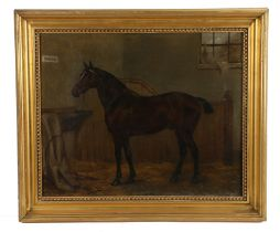 19th Century British school, a horse standing in a stable, the name Power top left corner,