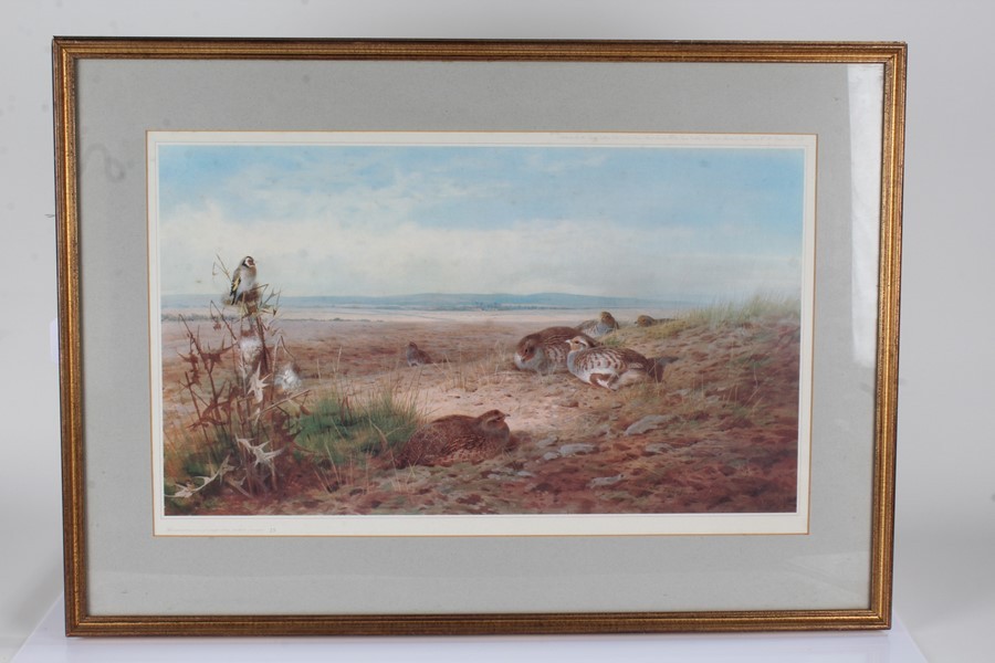 Tyron Gallery Archibald Thorburn limited edition print, Partridges and a goldfinch, numbered 35/500,