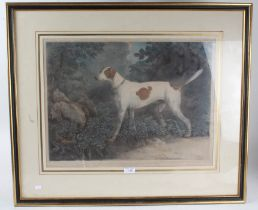 After Salwrey Gilpin, 18th century aquatint by F. Jukes, A valuable Pointer in the possession of
