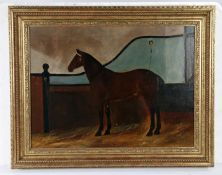 20th Century British primitive school, a chestnut horse in a stable, unsigned oil on canvas, 59cm