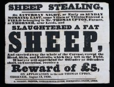 Sheep Stealing, a 19th Century reward poster, SHEEP STEALING. On Saturday night, of early on