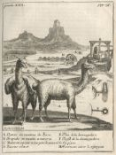 FREZIER (AMÉDÉE FRANÇOIS) A Voyage to the South-Sea, and Along the Coasts of Chili...