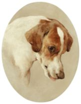 Edwin Douglas (British, 1848-1914) Study of the head of a hound