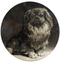 Herbert Thomas Dicksee, R.E. (British, 1862-1942) A pekingese tondo 35cm (13 3/4 in) diameter (Pu...