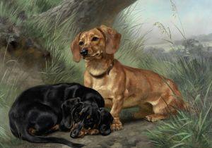 Louis Henry Weston Klingender (British, 1861-1950) Two dachshunds in a landscape