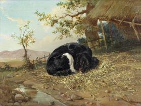 Eugène Verboeckhoven (Belgian, 1799-1881) Spaniel resting
