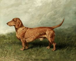 John Emms (British, 1843-1912) Portrait of a dachshund