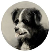 Attributed to Ann Cathrow (British, 19th Century) A pair of terrier studies both 30.5 x 30.5cm (...