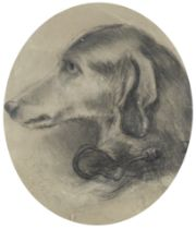A. P. Meredith (British, 19th Century) Study of a dog in profile