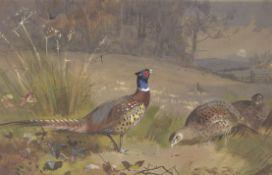 Archibald Thorburn (British, 1860-1935) Pheasants on the edge of a wood