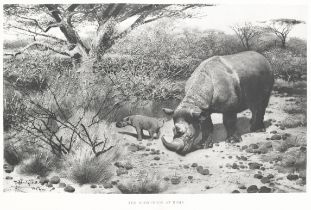 POTOCKI (JOSEPH) Sport in Somaliland, Being an Account of a Hunting Trip in that Region, NUMBER 1...