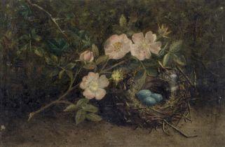 English School (19th Century) Still life of dog roses and a bird's nest