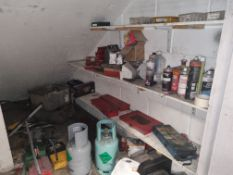 Contents of Store: Tools, Cleaners, Petrol Cans etc.