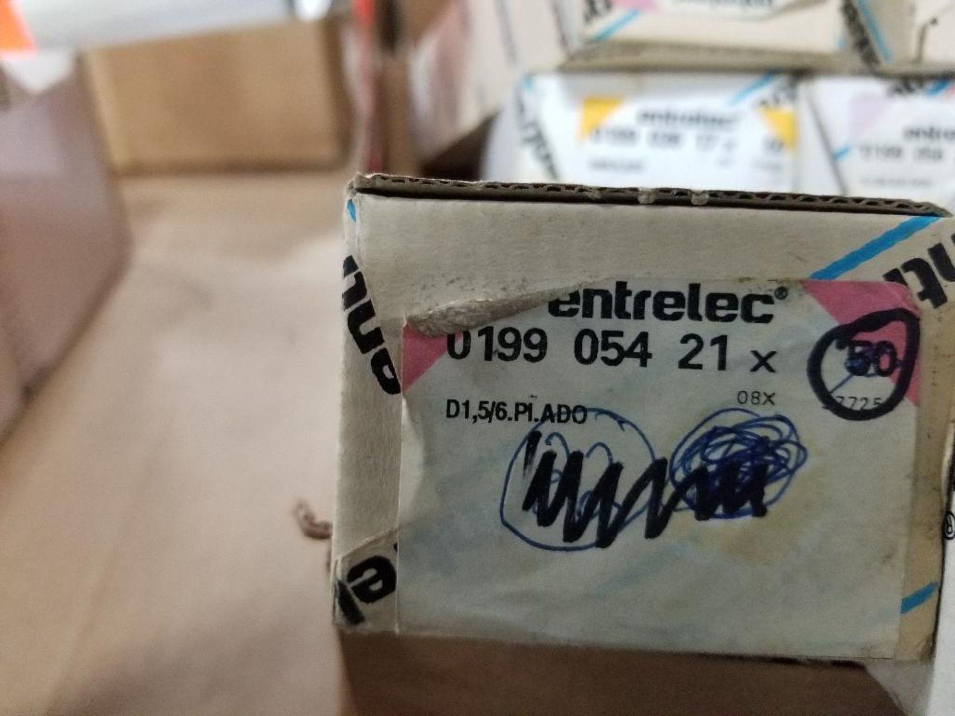 Assorted Entrelec fuse holder blocks. - Image 4 of 10