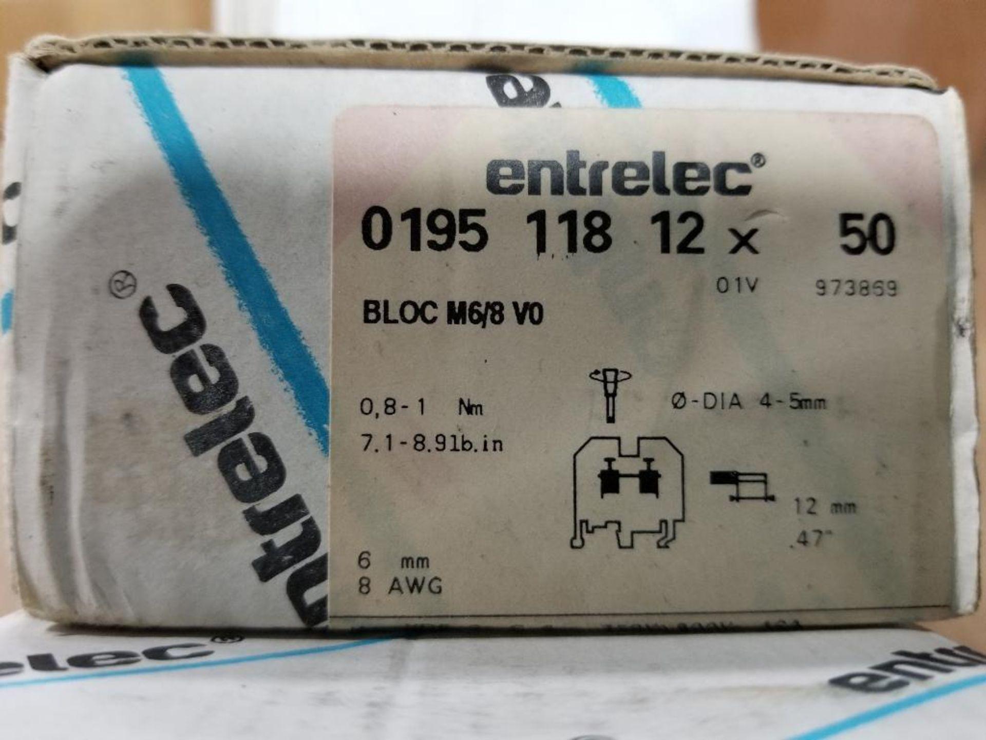 Assorted Entrelec fuse holder blocks. - Image 4 of 6