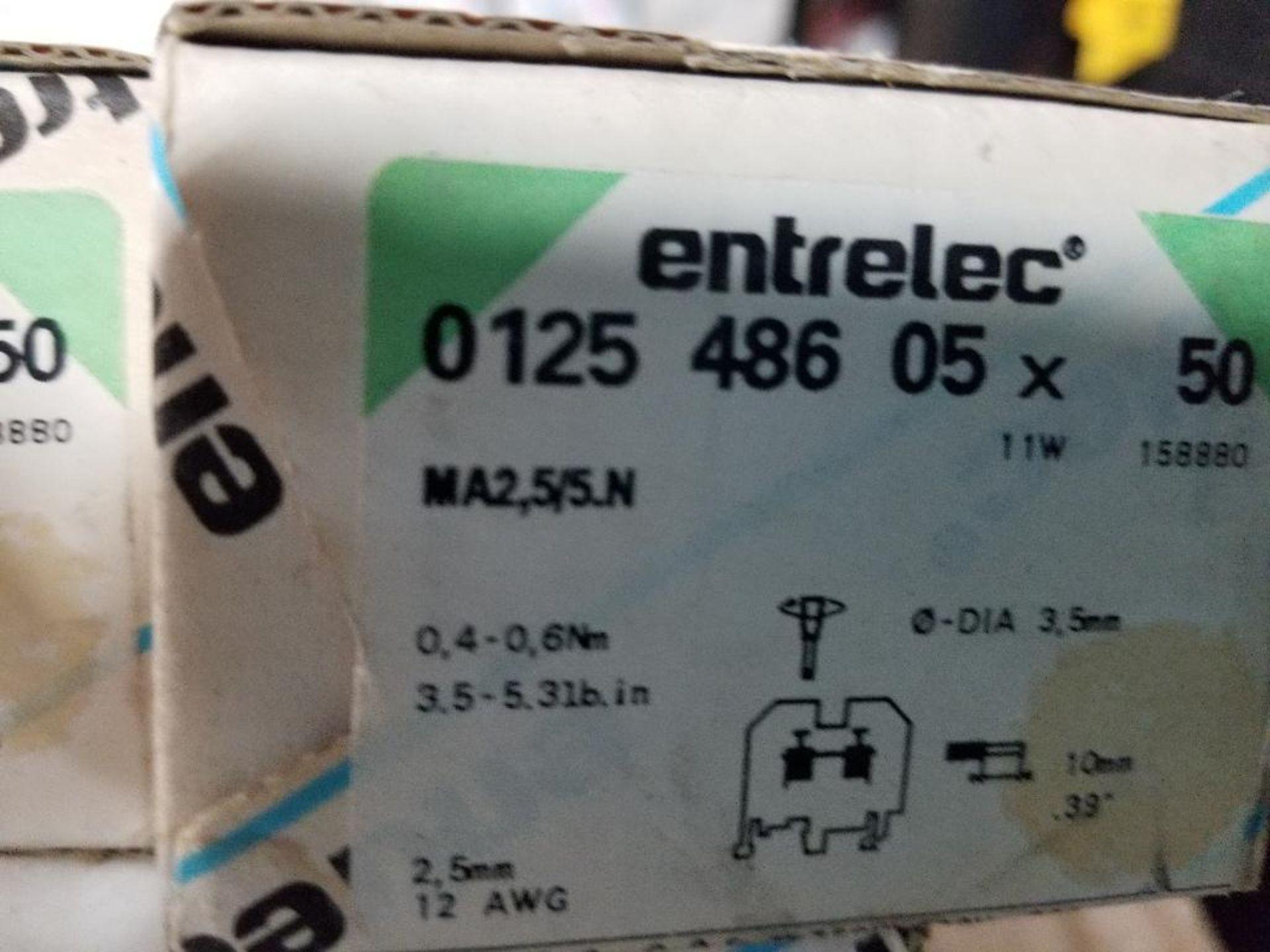 Assorted Entrelec fuse holder blocks. - Image 8 of 10