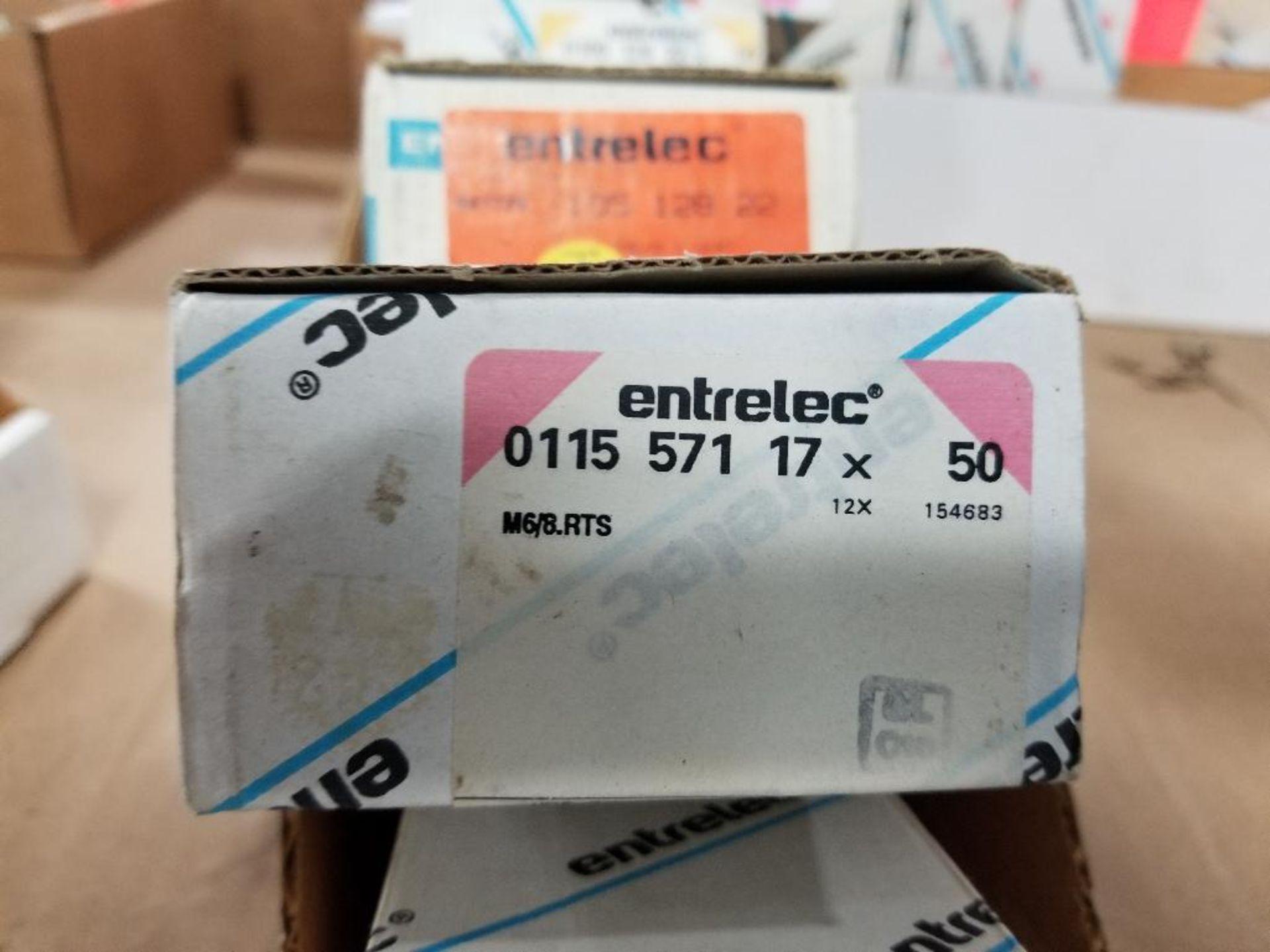 Assorted Entrelec fuse holder blocks. - Image 3 of 6