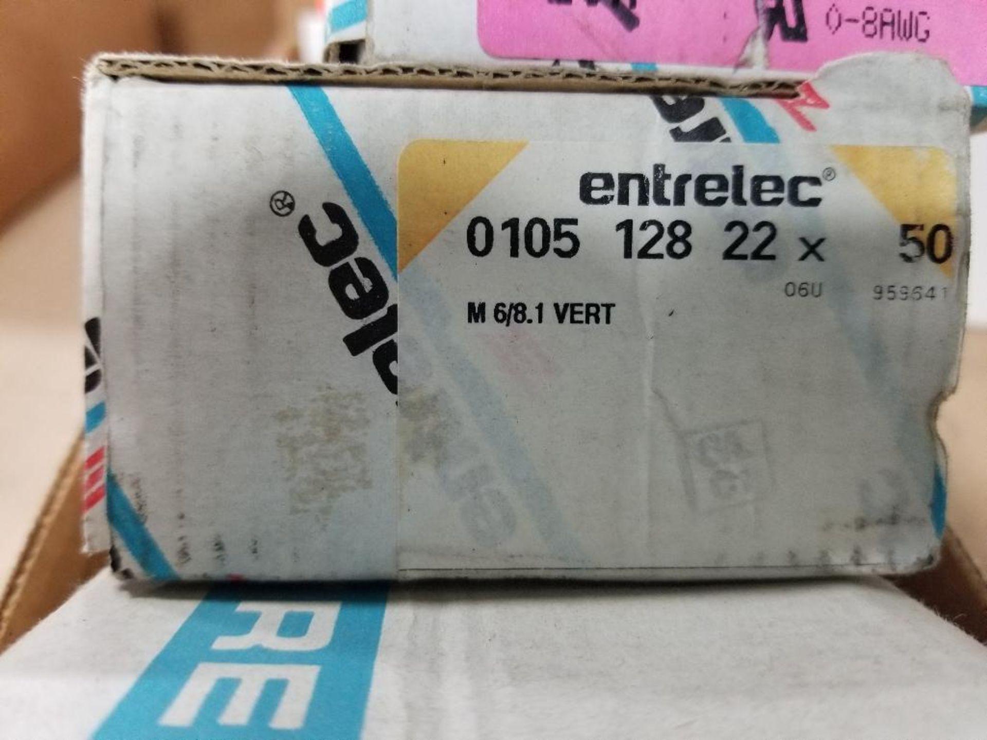 Assorted Entrelec fuse holder blocks. - Image 5 of 6