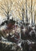 Fiona Carvell (British, B.1970), Coppice, pastel and charcoal on board, signed lower right,