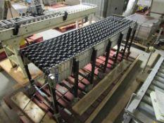 Roller Conveyor (Line 84)